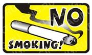 Арт Рейсинг 2-136/229 Наклейка NO SMOKING